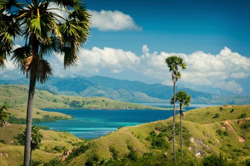 コモド島、インドネシア