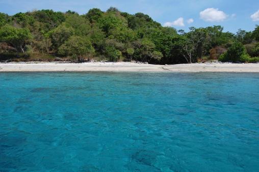 モヨ島、インドネシア