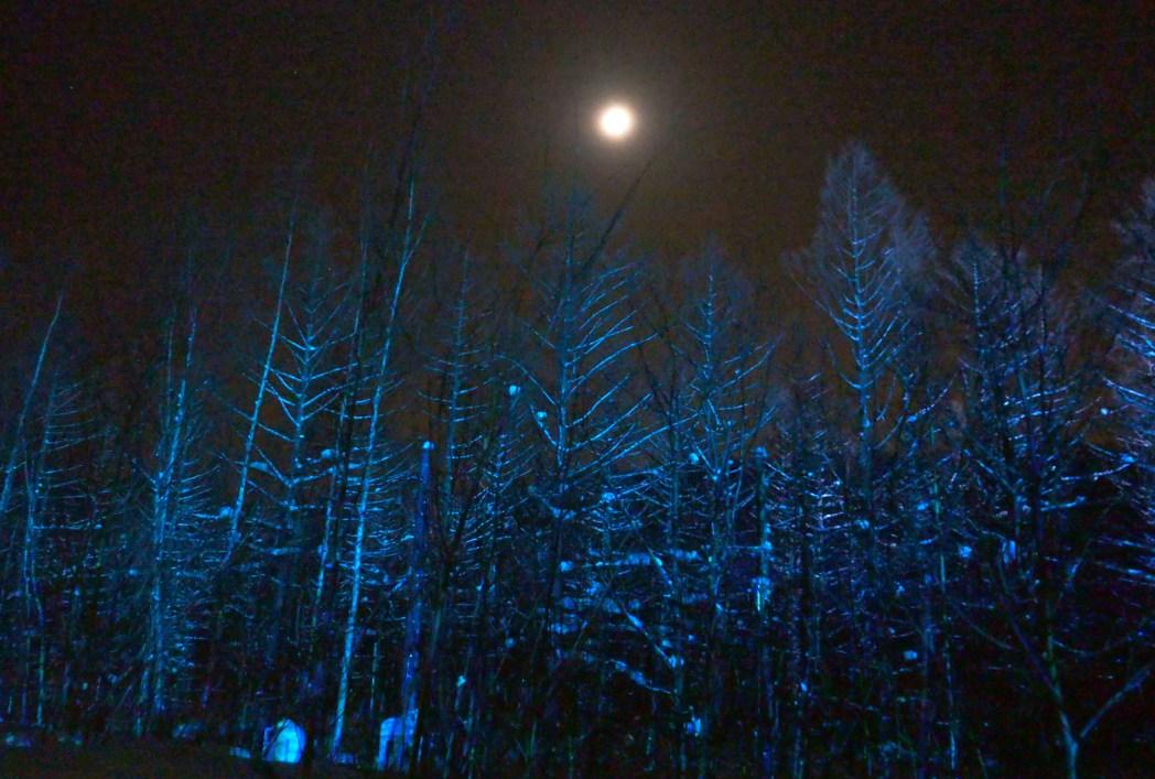 ライトが消えると夜空には無数の星が