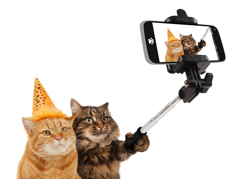 自撮り(セルフィー)はインカメラの画素数