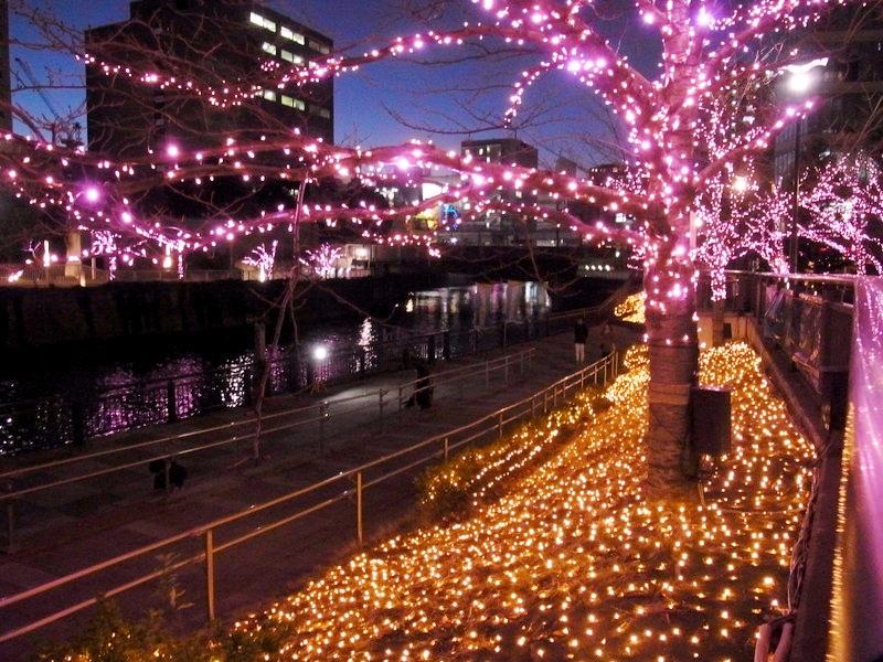 目黒川沿道に輝く桜のイルミネーション