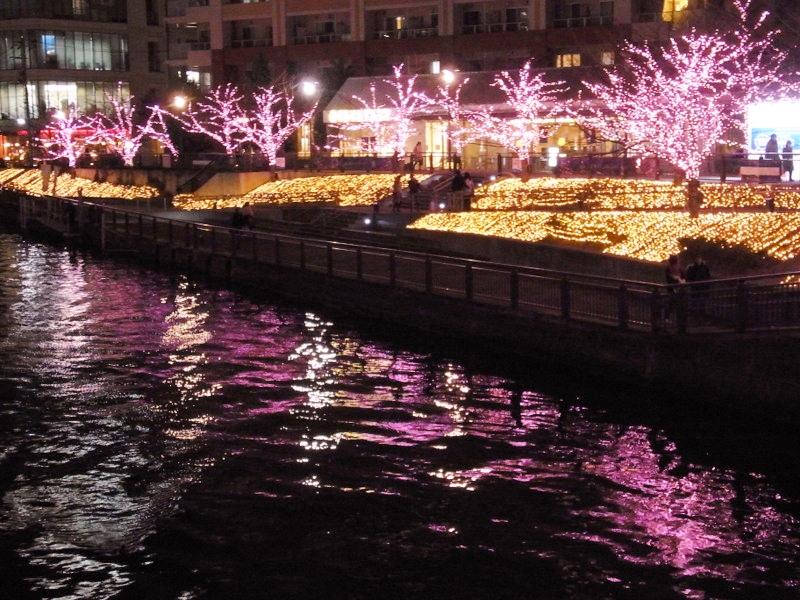 水面にゆらゆらと映る桜のイルミネーション