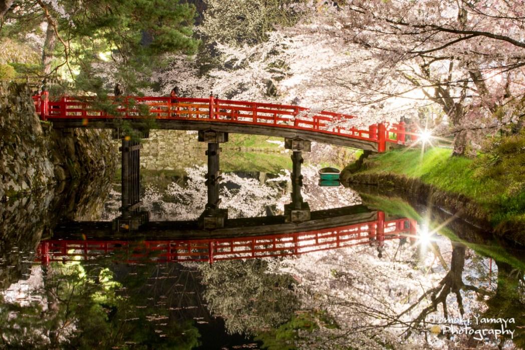 弘前公園ならではの美しい水面鏡