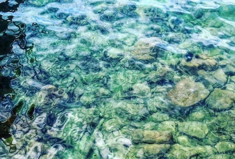 小さな魚たちが泳ぎまわる海