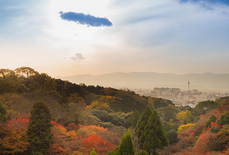 秋の京都、夕日と紅葉で真っ赤に染まる嵐山はなんとも言えない美しさです