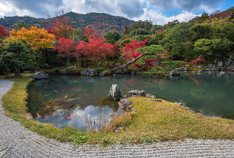 天龍寺の曹源池庭園は史跡・特別名勝に指定されるほど高い評価を得ている庭園です