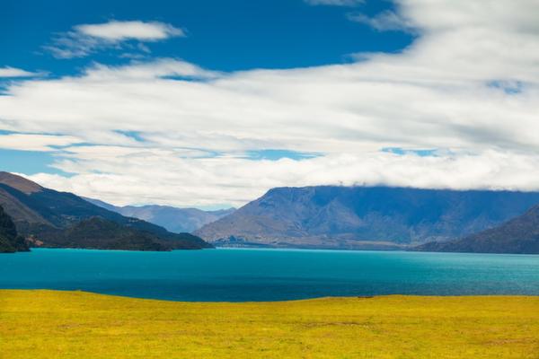 グレノーキー、ニュージーランド
