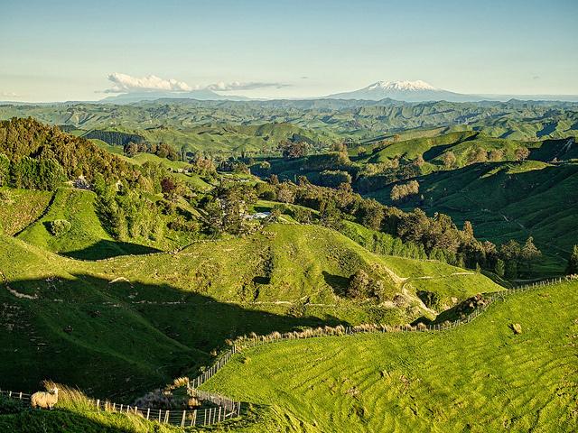 マワナツ・ワンガヌイ、ニュージーランド
