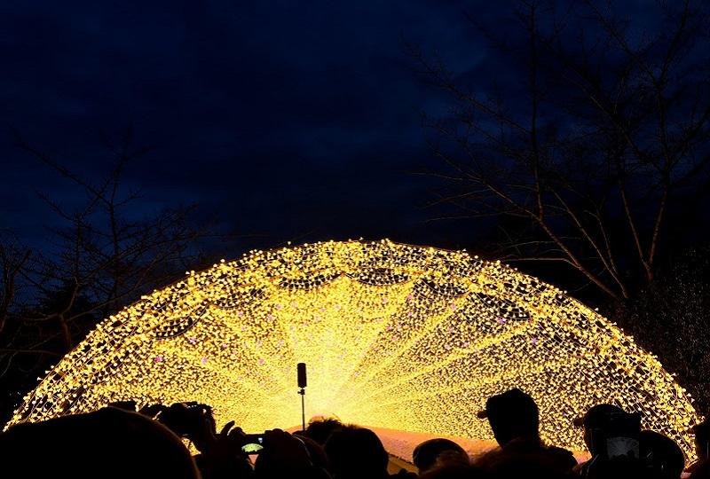 一斉に光が輝く、感動的な点灯式