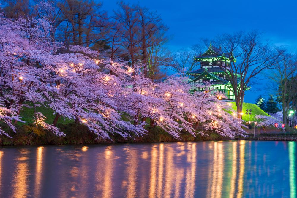 そびえ立つ高田城を背景に