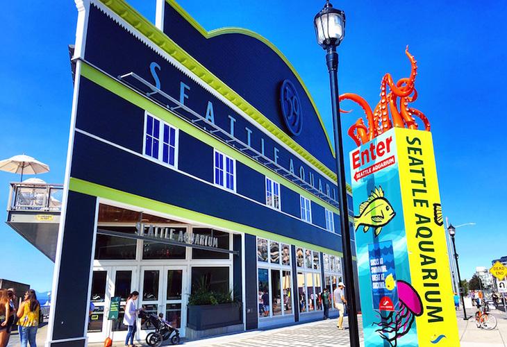 ユニークなイベントを開催する「シアトル水族館」は地元の人々も訪れる人気スポットです