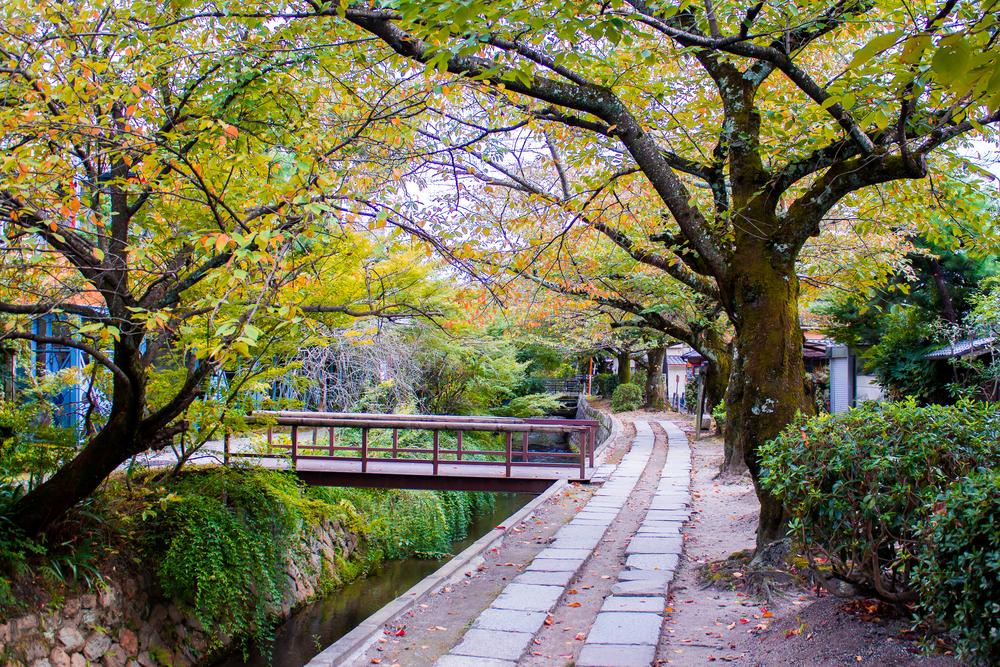 哲学の道 京都