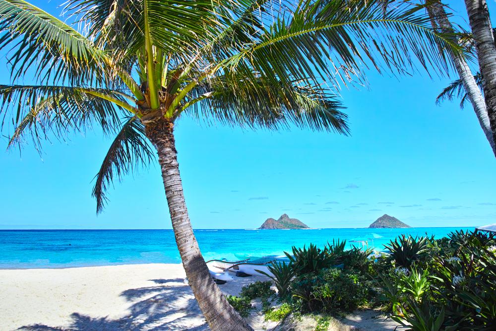全米で最も美しいビーチ、ラニカイ