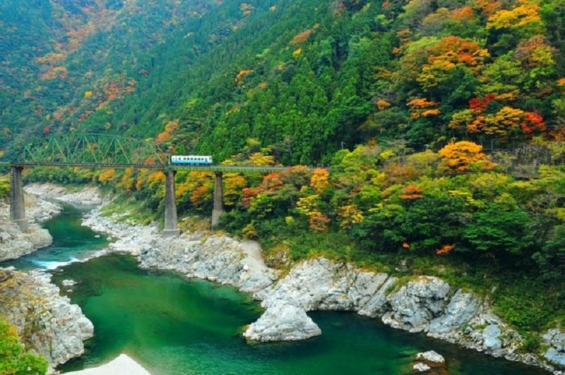 吉野川沿いの峡谷、大歩危・小歩危