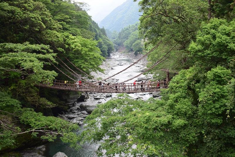 日本三大秘境とも言われる祖谷のかずら橋