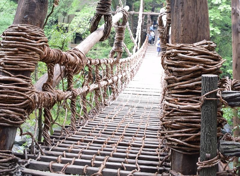シラクチカズラを編んで造られたかずら橋