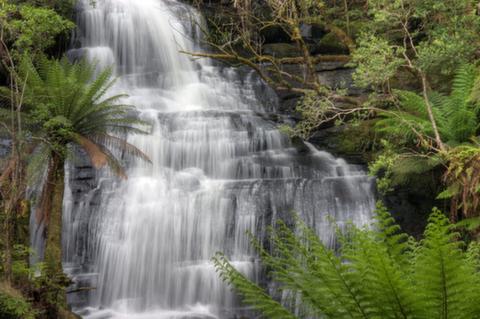 グレート・オトウェイ国立公園、オーストラリア