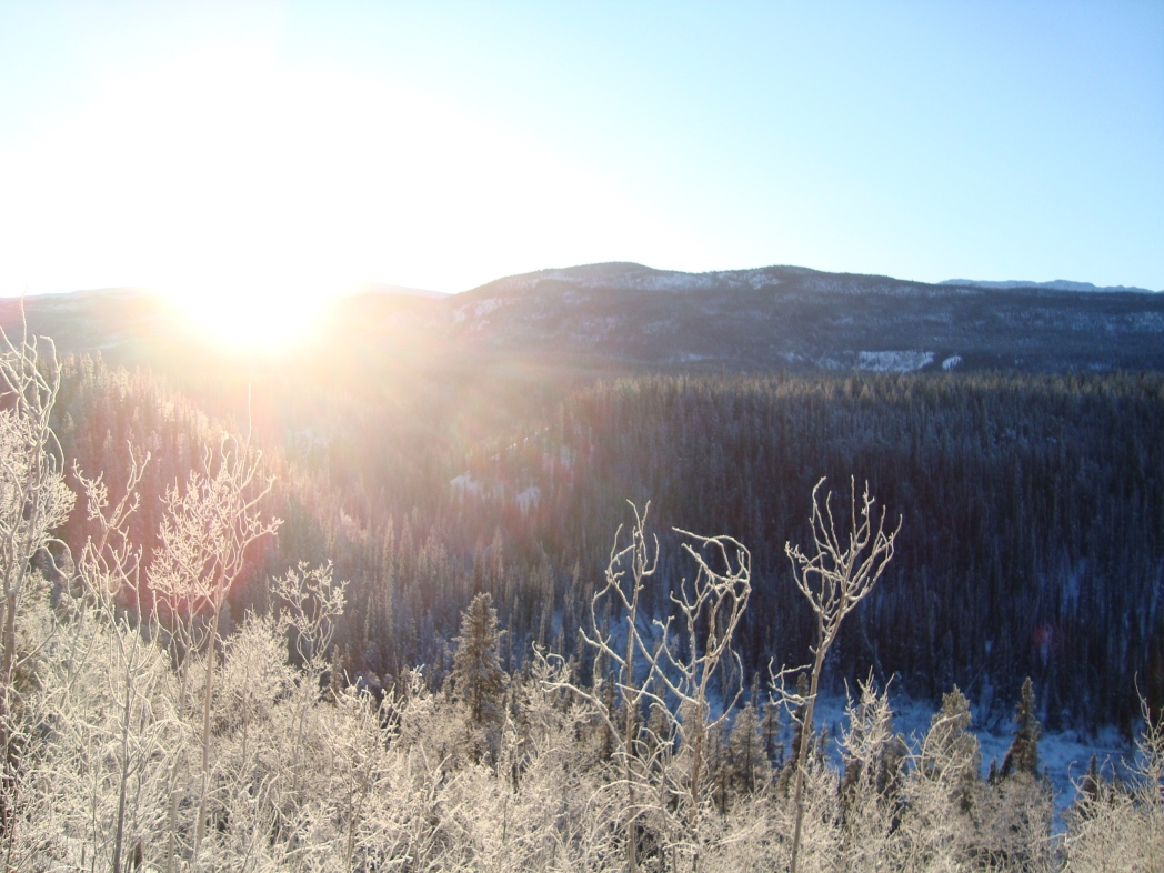 ホワイトホースの1~3月の平均最低気温はマイナス17度