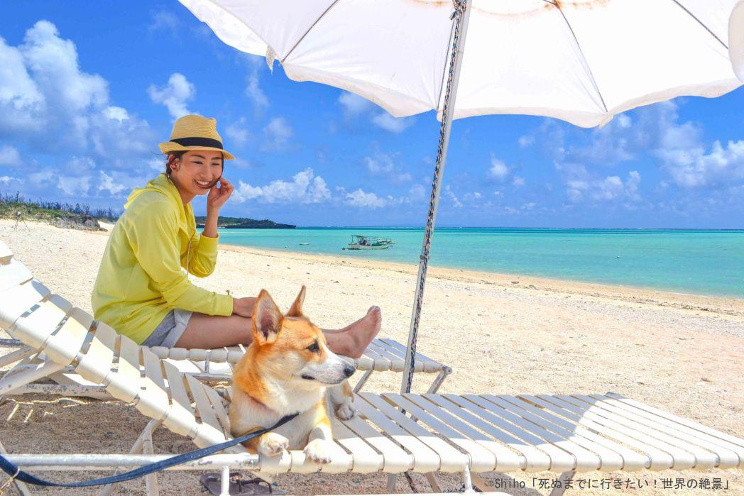 百合ヶ浜の看板犬「ゆずちゃん」