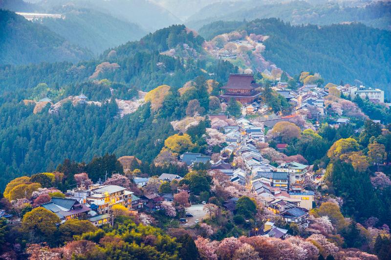 吉野山の絶景